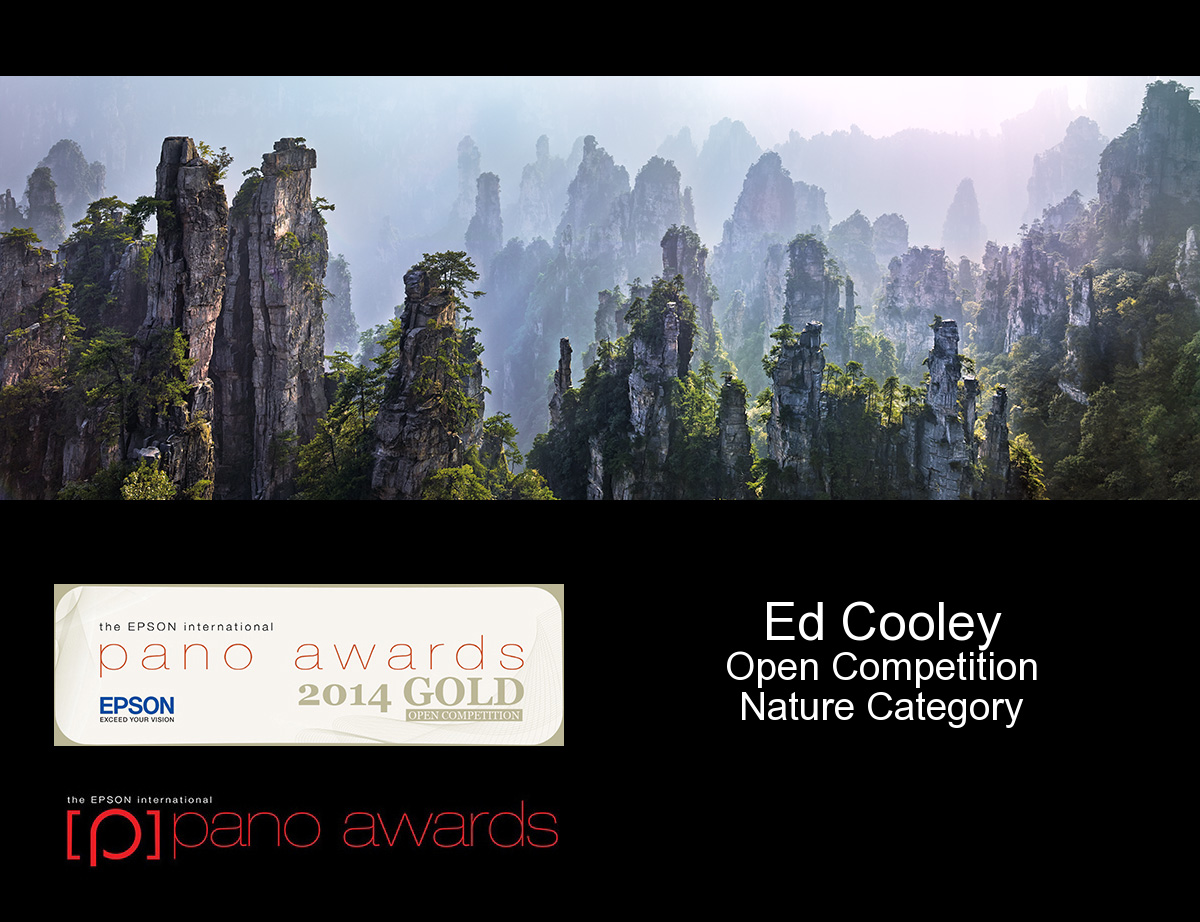 Epson Pano Awards Gold Medal and Competition Finalist