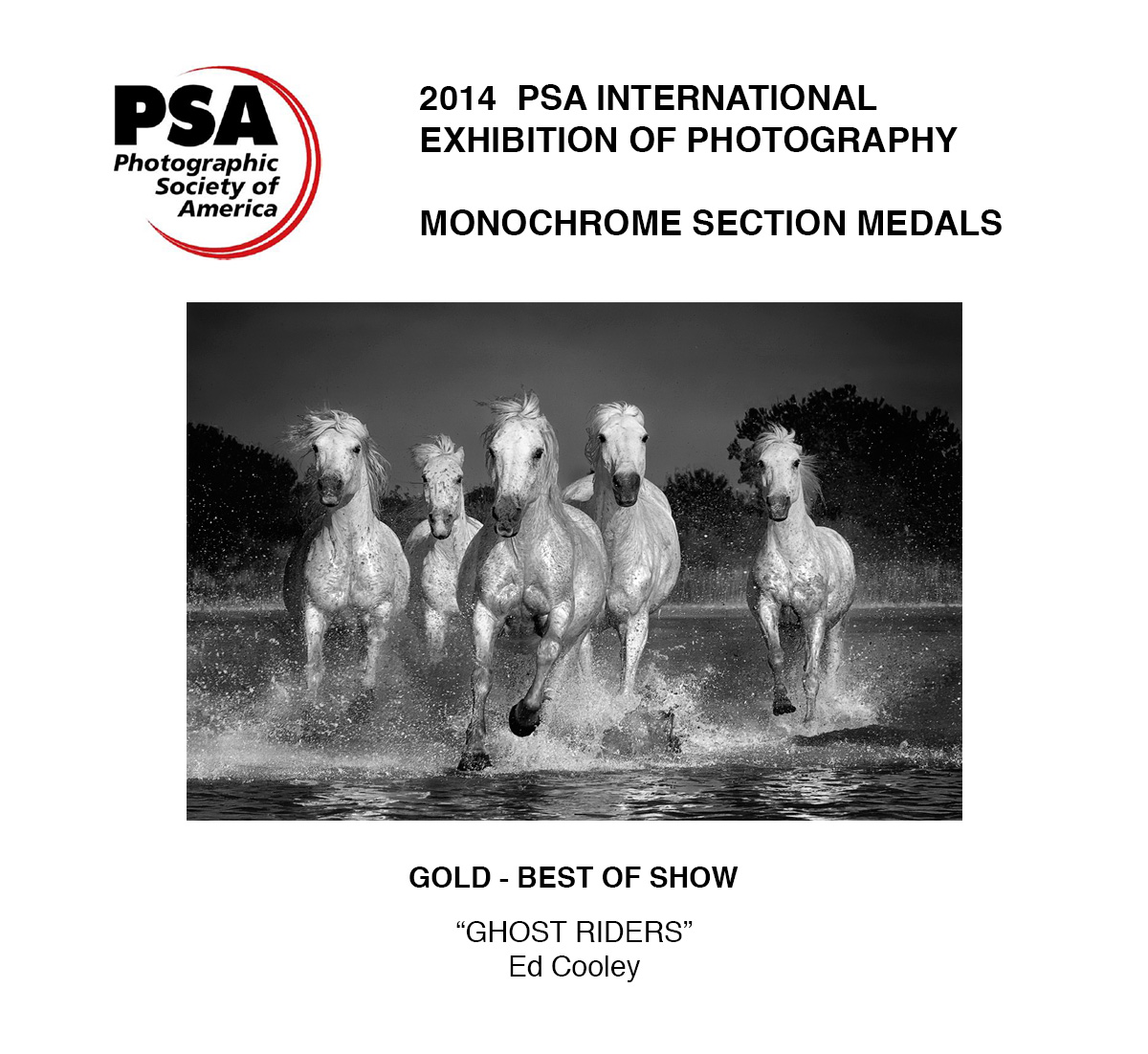 2014 PSA Gold Medalist and Best of Show
